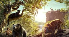 The Law of the Jungle –the Changeable Law in Disney's New Jungle Book