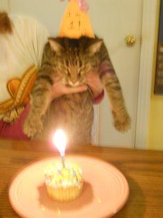 Happy 1st birthday, Violet!