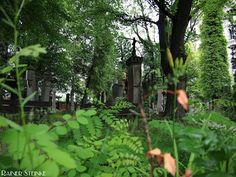 Petersfriedhof Friedhof St.Peter in Straubing