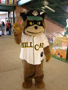 Southpaw the Hillcat, Lynchburg Hillcats mascot; Class A-Advanced Carolina League.