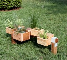 garden idea --in patio blocks instead of grass