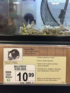 Jeff Wysaski, the comedic genius behind these hilarious book section and book cover pranks, is back with a new series of funny sign alterations that he made – this time at a pet shop. In his simple but funny prank, Wysaski changed the signs labeling some of the critters at the pet store to reflect who they REALLY are.