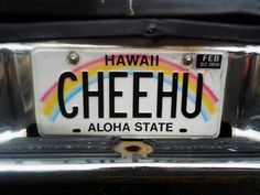 """The Hawaiian license plate was a huge inspiration, with its rainbow and simplicity I feel like this could be redesigned stating """"808-SOM"""" and at the bottom have SOM spell out State Of Mind, Hawaii."""