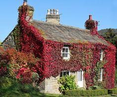Cottage. Peak District.