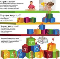 There are four foundational levels of sensory processing within our central nervous system for age appropriate development and academic success. Each level requires mastery for solid progression to the next level. If mastery is not acquired, then developmental delays in levels 2, 3, and 4 will develop because of gaps in the preliminary foundation (Level 1).