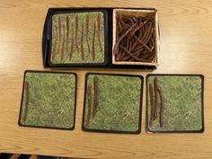 earthworms 1-10 Earthworms, Bamboo Cutting Board