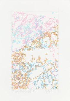 INGRID CALAME  #294 Drawing (Tracings from Buffalo, NY), 2008  Color pencil on trace mylar  26 X 18 inches