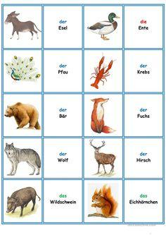 Games in German class: Memory – the animals - Kinderbetreuung Foreign Language Teaching, German Language Learning, Dual Language, French Language, German Grammar, German Words, Learn German, Learn French, Deutsch Language