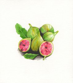 Fig watercolor by PyWoodillustrations on Etsy, $15.00
