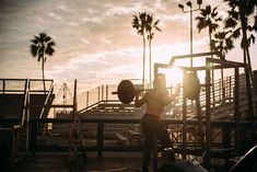 #athlete #beach #bodybuilder #bodybuilding #carribean #equipments #exercise #fitness #health #healthcare #leisure #man #outdoors #palm trees #people #person #recreation #resort #sea #silhouette #sports #summer #sun #sun
