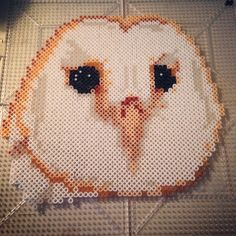 Owl face perler beads by tenichi