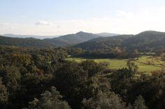 Découvrez cette propriété de prestige en Provence pouvant accueillir jusqu'à 27 personnes. Unique, au coeur d'un écrin de verdure et d'un domaine de 65 ha, ce mas a été construit au XVIIIème siècle et totalement rénové pour offrir des prestations haut de gamme. Prestige, Totalement, Rey, Provence, Mountains, Unique, Water, Travel, Outdoor