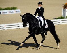 TOTILAS:  No matter who owns him or rides him (and despite training methods that are questionable, at best), this is still one of the greatest dressage horses of all time.