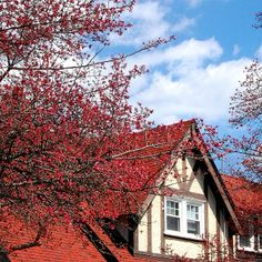 Beautiful spring day at Doane Hall!