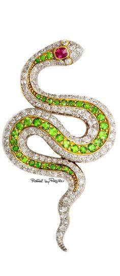 Regilla ⚜ Spilla a forma di serpente