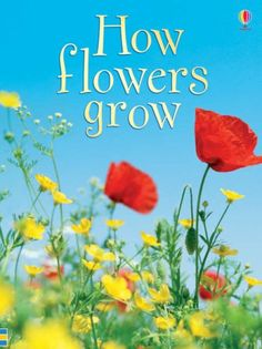Book: How Flowers Grow by Emma Helbrough http://www.amazon.co.uk/dp/0746074506/ref=cm_sw_r_pi_dp_C2kzub0V0KZDF