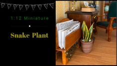 Miniature Plants, Miniature Rooms, Diy Dollhouse, Dollhouse Miniatures, Mini Plants, Snake Plant, Fun Projects, 3d Printer, Free Printables