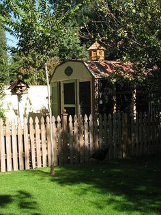what a great use of an old metal shed!