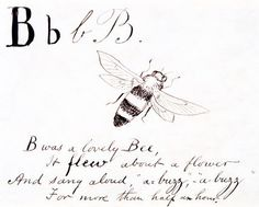 The letter B, by Edward Lear (Print On Demand)