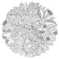 Mandala Enfant 25 Idees Originales A Emprunter Et A Imprimer