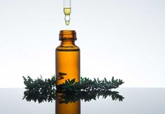 A healthy hair growth demands proper care of the scalp and hair. Here are 15 essential oils for hair growth and ultimate hair care solutions. Thyme Essential Oil, List Of Essential Oils, Essential Oils For Headaches, Essential Oil Blends, Young Living, Helichrysum Oil, Hair Loss Women, Best Oils, Hair Growth Oil