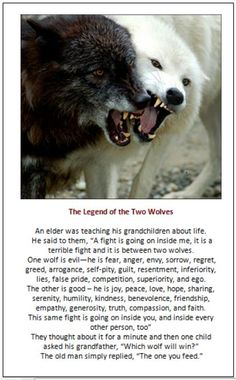 Bingo. I will feed more wisely. A Cherokee Legend, Two Wolves