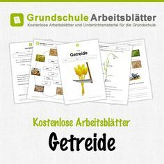 27 best Sachunterricht Getreide images on Pinterest | Montessori ...