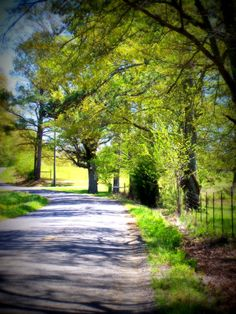 Long road home Banner Background Images, Hd Background Download, Studio Background Images, Background Images For Editing, Photo Background Images, Picsart Background, Blurred Background, Background For Photography, Nature Photography