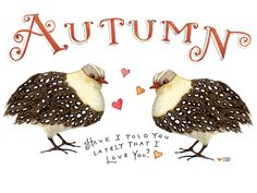 We love Autumn at the Cottage. It's our time to prepare for all the good moments that are coming.