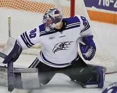 niagara purple eagles men's hockey - Google Search