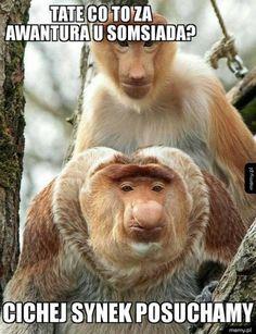 Znalezione obrazy dla zapytania memy janusz nosacz Very Funny Memes, Wtf Funny, Polish Memes, Text Memes, Everything And Nothing, Lol, Humor, Instagram Posts, Pictures