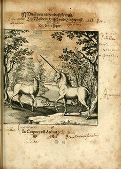 Dyas chymica tripartita…1625-Johann Grasshoff