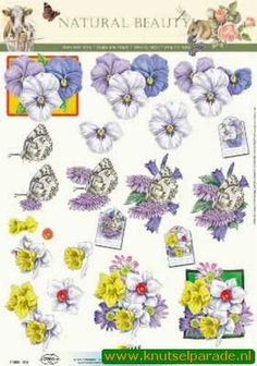 Nieuw bij Knutselparade: 1142 Doe Maar knipvel bloemen nr. 11053 314 of 312 https://knutselparade.nl/nl/bloemen/2015-1142-doe-maar-knipvel-bloemen-nr-11053-314-of-312.html   Knipvellen, Bloemen  -  Doe Maar