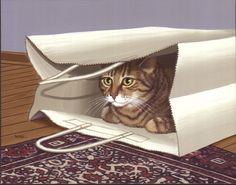 SUE WALL Oh yeah, just like a toddler loves the boxes more than the gifts inside, cats notoriously go for the bags. I had a cat named Cupcake who would run (literally) inside any crunchy plastic bag she could get into. Even running into the wall wouldn't slow her down.