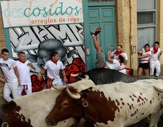 Running of the bulls: The most shocking photographs Pamplona hosts its infamous running of the bulls – part of the annual San Fermin festival – once again  -  July 7, 2017:      A participant is tossed by a Cebada Gago fighting bull on the first day of the San Fermin bull run festival in Pamplona