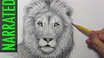 How to draw a realistic lion. Showing how to draw a lion. Pencil Art Drawings, Realistic Drawings, Art Drawings Sketches, Easy Drawings, Animal Drawings, Drawing Animals, Sketch Drawing, Sketching, Drawing Tutorials