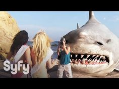 90 Best Girls and Sharks images in 2017 | Sharks, Film