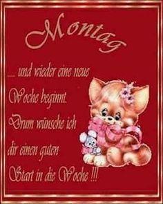 Teddy Bear, Fur, Animals, Instagram, Good Morning Monday Images, Morning Sayings, Good Night, Happy Monday, Animales
