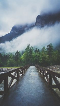 Forest River Crossing Mountain Fog IPhone 8 HD Wallpaper