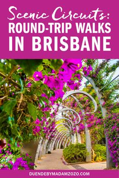 """Nail your 10k-a-day step game with these scenic, round trip walks in Brisbane that will make you fall in love with """"The River City."""" Brisbane River, Brisbane City, Brisbane Australia, Australia Travel, Things To Do In Brisbane, Kakadu National Park, Fall Picnic, Australian Capital Territory"""