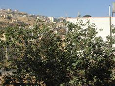 #magiaswiat #podróż #zwiedzanie # jordania#blog #azja #zabytki #swiatynia  #miasto Blog, Blogging