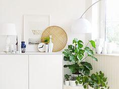 Auf der Mammilade|n-Seite des Lebens | Personal Lifestyle Blog | Wohnen mit Pflanzengrün, Holzakzenten und viel Weiß | Wohnzimmer | Pflanzen | Pilea Peperomiodes | Sideboard | Truth Wins |