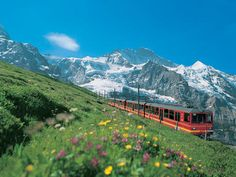 Travel on the Jungfrau Express train... Based in the picturesque and typically Swiss village of Meiringen, this escorted tour takes you on some of the most spectacular stretches of rail in Europe, as you discover the beauty and majesty of the Alps, including the breathtaking Jungfrau.
