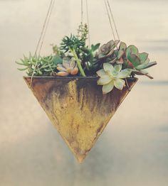 Grand Pyramid Ceramic Planter | For your colony of airplants and succulents, this ceramic plan... | Pots & Planters