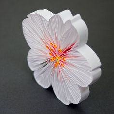 There's no denying quilling has changed  significantly in the past decade and these changes are tremendously exciting. Thankfully, art isn't...