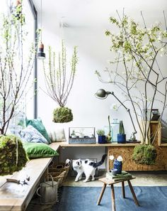 35 Creative Hanging Plant Projects for Scandinavian Style. Signs close to the plants usually offer relevant quotations. Like a lot of the plants on this list, you also will need to be on the lookout f. Interior Plants, Interior Exterior, Home Tumblr, Hanging Plants, Indoor Plants, Indoor Gardening, Air Plants, Organic Gardening, Turbulence Deco
