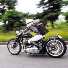 Black and white striped Harley