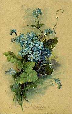 vintage, forget-me-not, greeting card, card, felicitation, blue flower, vintage…