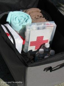 Organize Everything. How to Organize Your Car.
