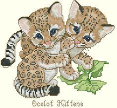 Ocelot Kittens by Gloria & Pat